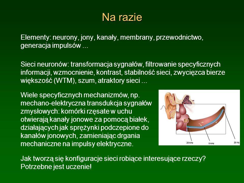 Na razieElementy: neurony, jony, kanały, membrany, przewodnictwo, generacja impulsów ...