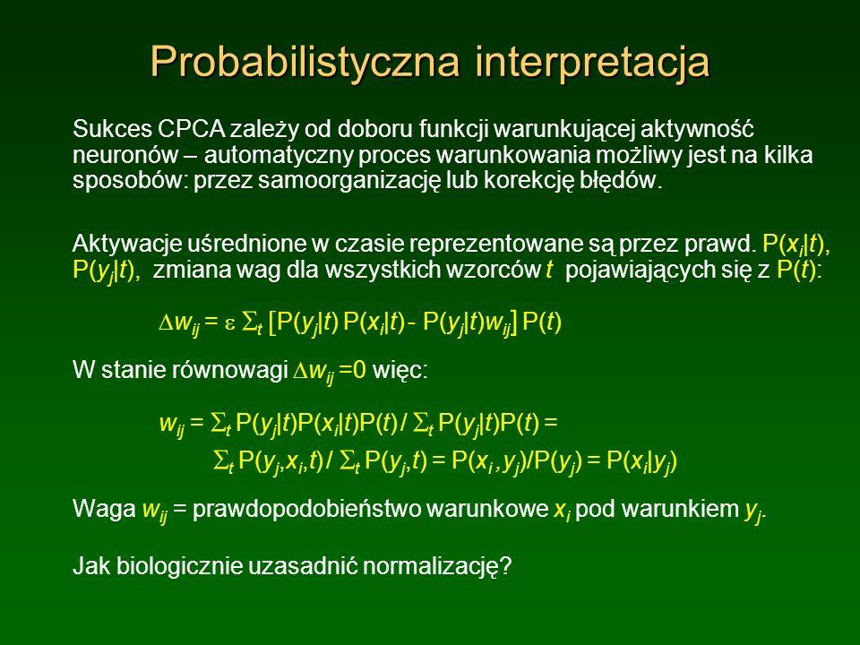 Probabilistyczna interpretacja