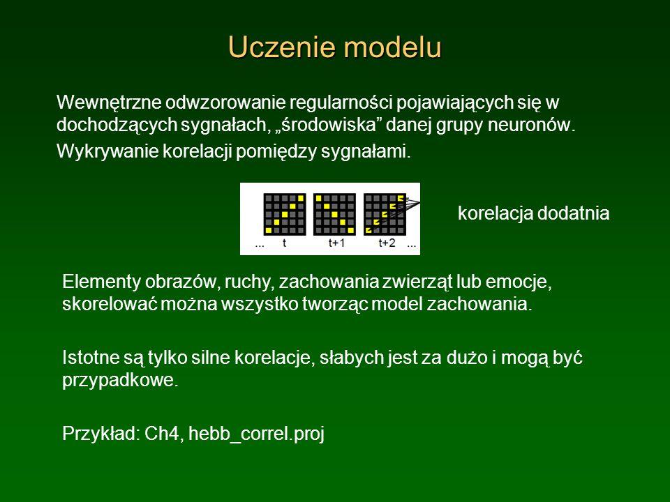 """Uczenie modeluWewnętrzne odwzorowanie regularności pojawiających się w dochodzących sygnałach, """"środowiska danej grupy neuronów."""