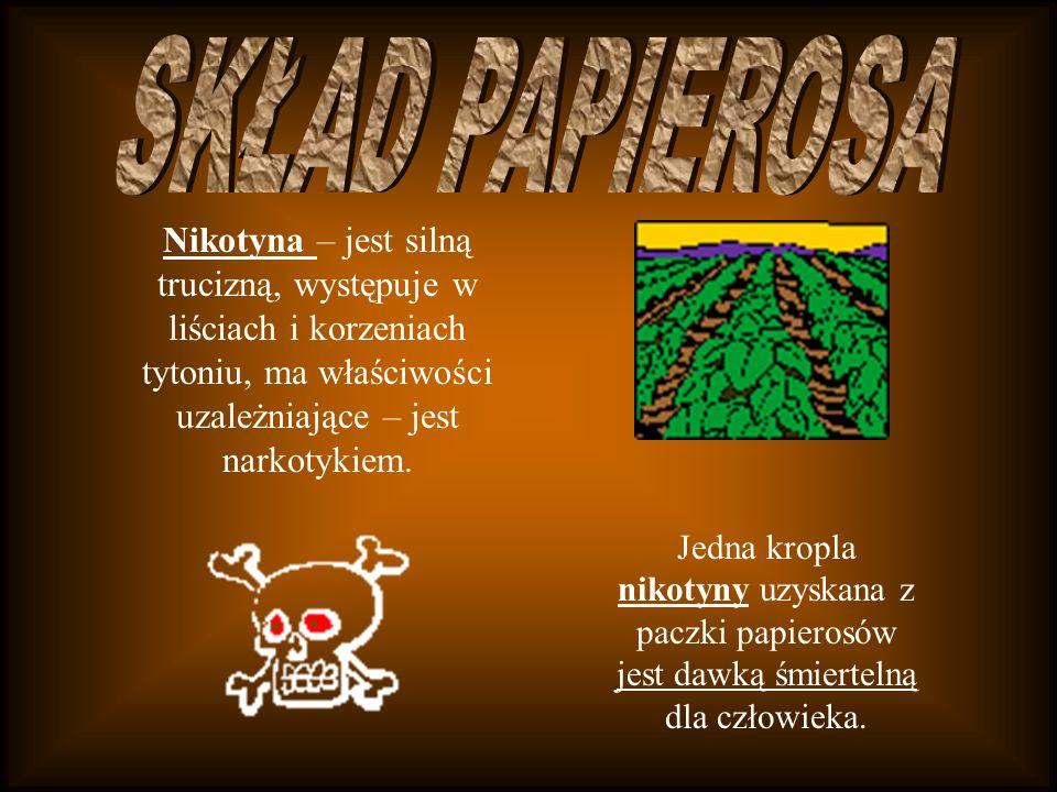 SKŁAD PAPIEROSANikotyna – jest silną trucizną, występuje w liściach i korzeniach tytoniu, ma właściwości uzależniające – jest narkotykiem.