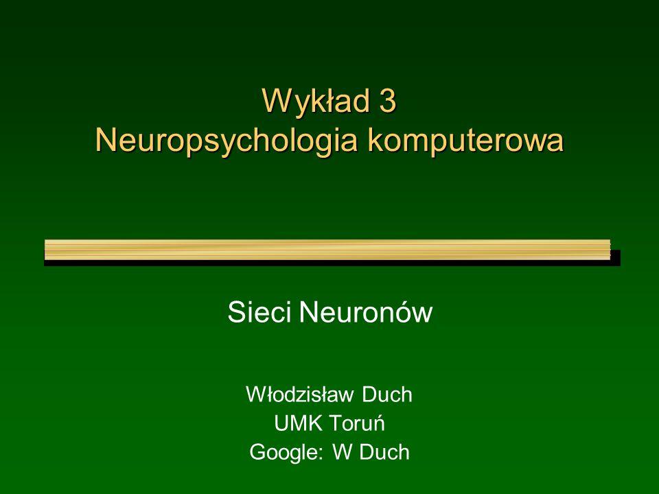 Wykład 3 Neuropsychologia komputerowa