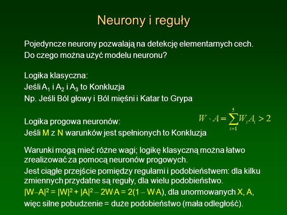 Neurony i reguły Pojedyncze neurony pozwalają na detekcję elementarnych cech. Do czego można użyć modelu neuronu