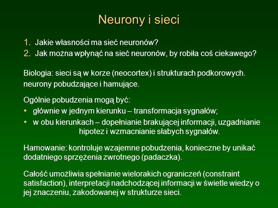 Neurony i sieci Jakie własności ma sieć neuronów