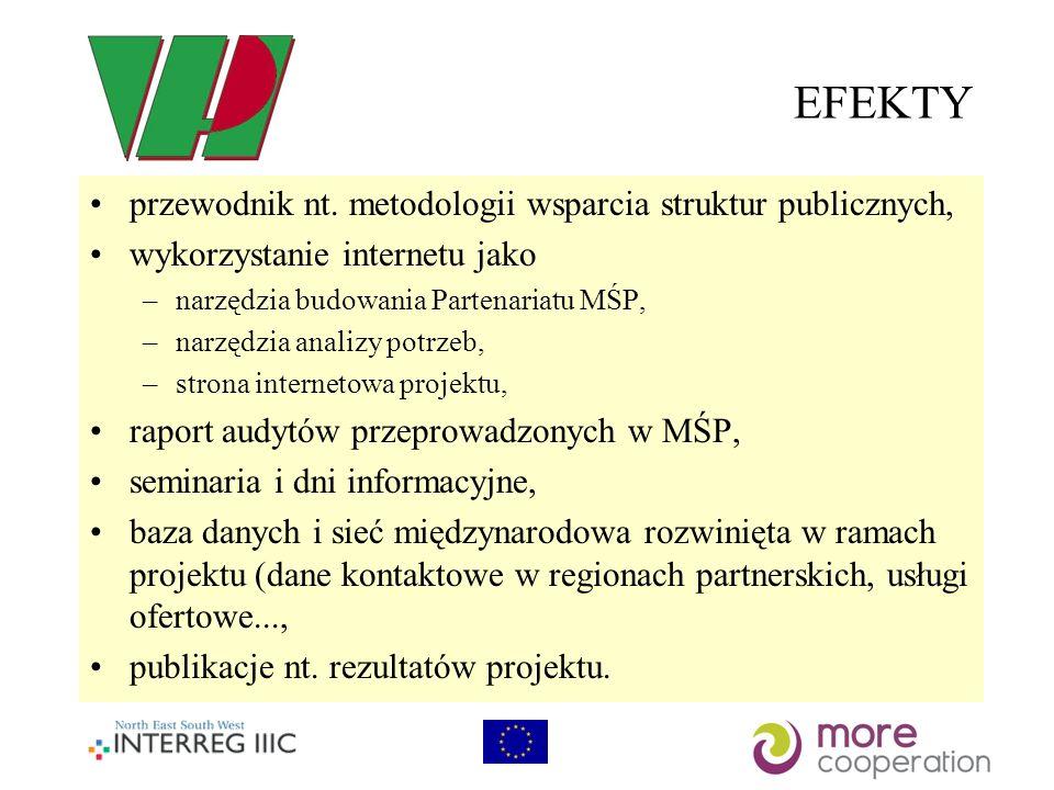 EFEKTY przewodnik nt. metodologii wsparcia struktur publicznych,