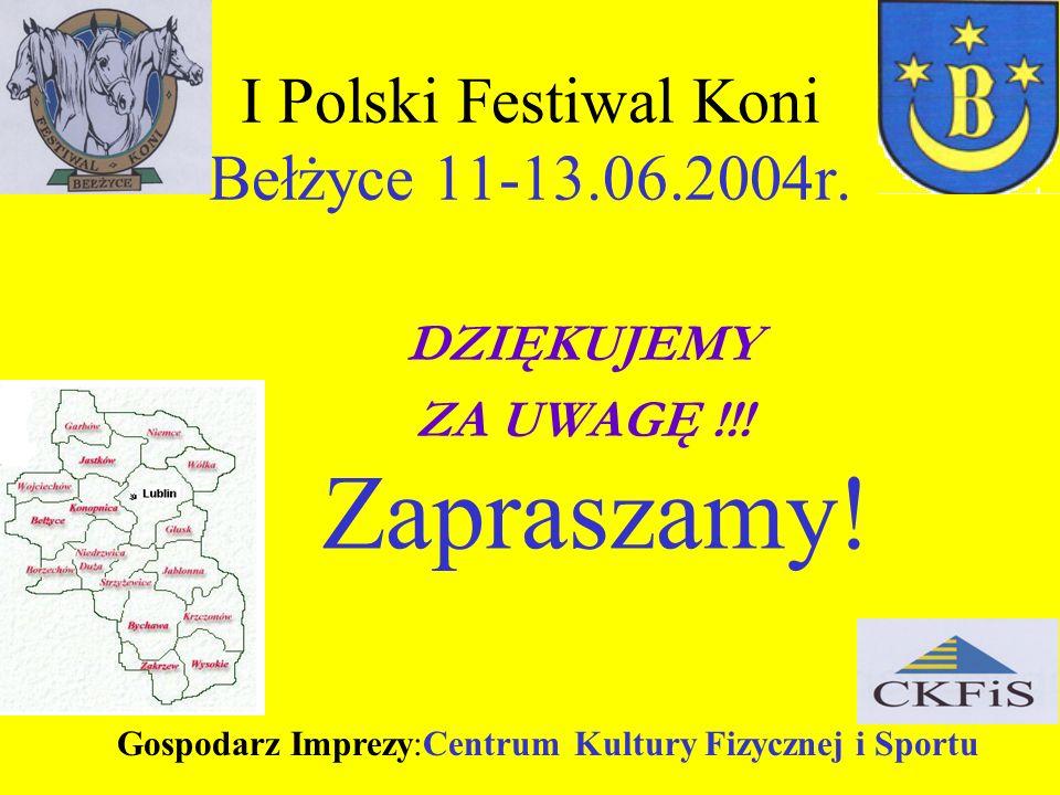 I Polski Festiwal Koni Bełżyce 11-13.06.2004r.