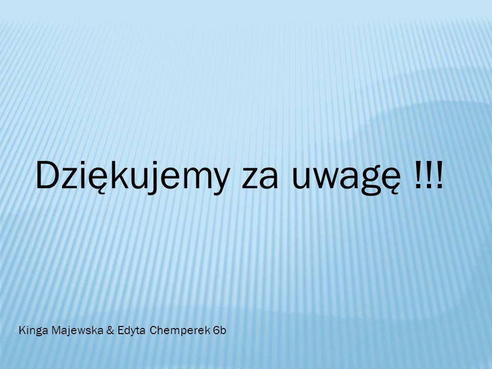 Dziękujemy za uwagę !!! Kinga Majewska & Edyta Chemperek 6b
