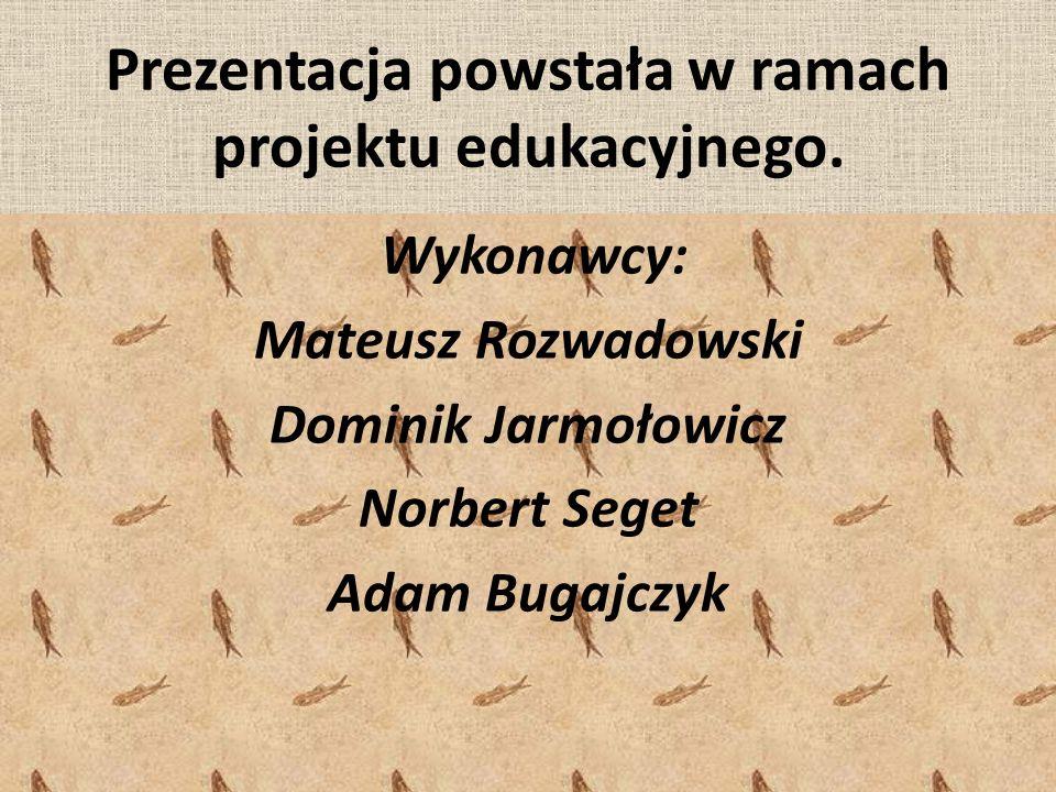 Prezentacja powstała w ramach projektu edukacyjnego.