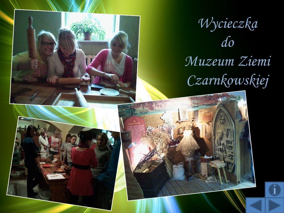 Wycieczka do Muzeum Ziemi Czarnkowskiej