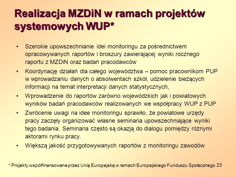 Realizacja MZDiN w ramach projektów systemowych WUP*