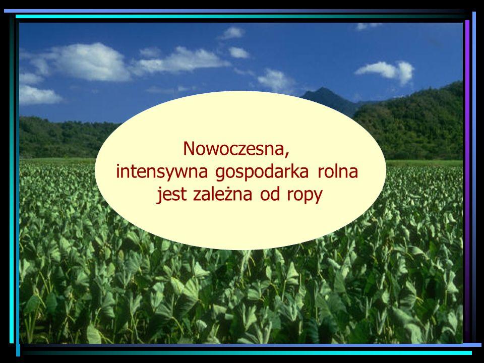 Nowoczesna, intensywna gospodarka rolna jest zależna od ropy