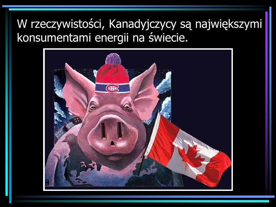 W rzeczywistości, Kanadyjczycy są największymi konsumentami energii na świecie.