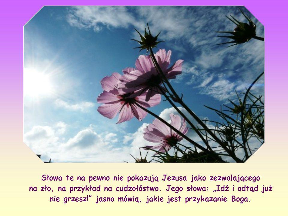 Słowa te na pewno nie pokazują Jezusa jako zezwalającego na zło, na przykład na cudzołóstwo.