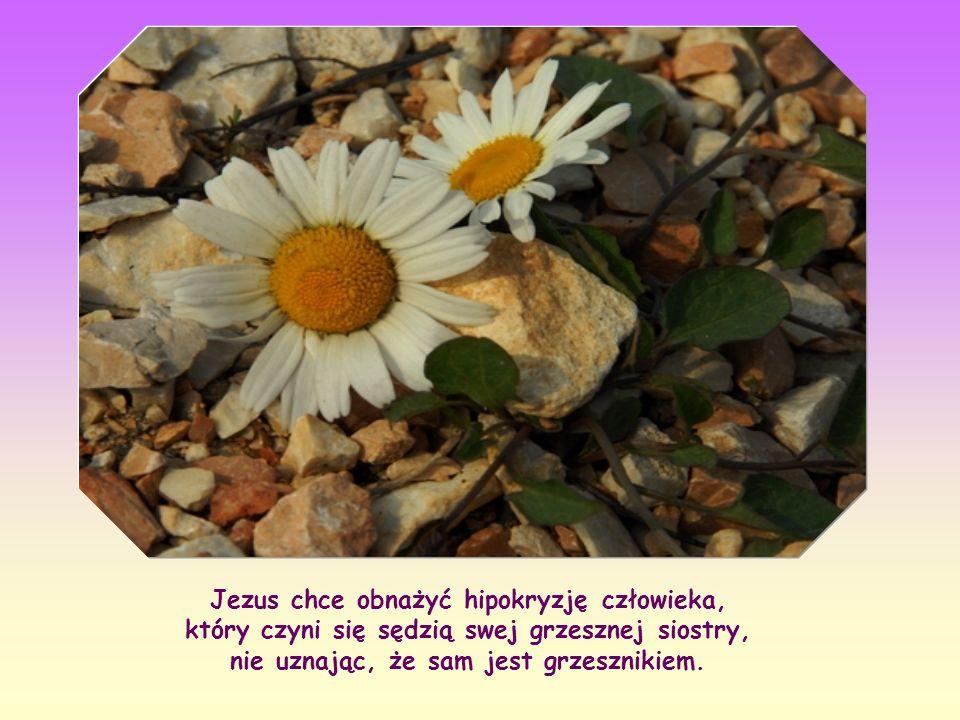 Jezus chce obnażyć hipokryzję człowieka, który czyni się sędzią swej grzesznej siostry, nie uznając, że sam jest grzesznikiem.