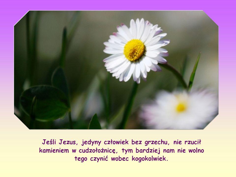 Jeśli Jezus, jedyny człowiek bez grzechu, nie rzucił kamieniem w cudzołożnicę, tym bardziej nam nie wolno tego czynić wobec kogokolwiek.