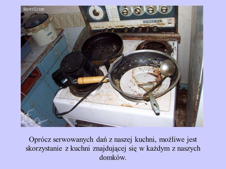 Oprócz serwowanych dań z naszej kuchni, możliwe jest skorzystanie z kuchni znajdującej się w każdym z naszych domków.