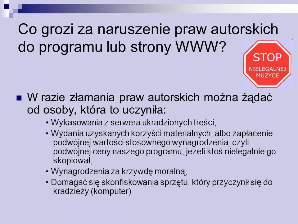 Co grozi za naruszenie praw autorskich do programu lub strony WWW