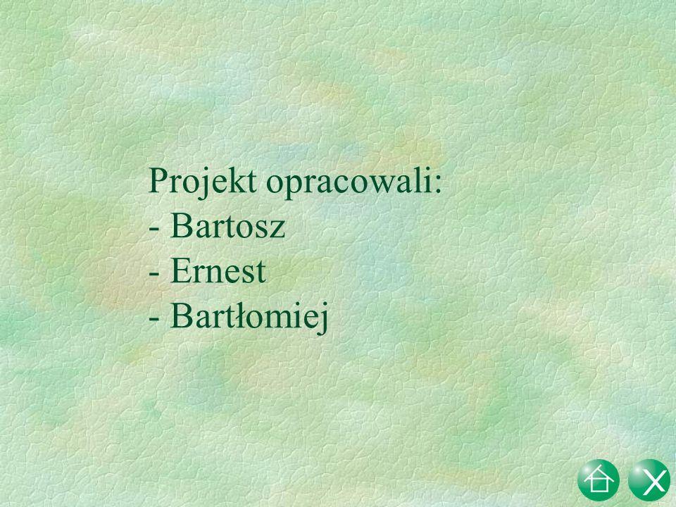 Projekt opracowali: Bartosz Ernest - Bartłomiej