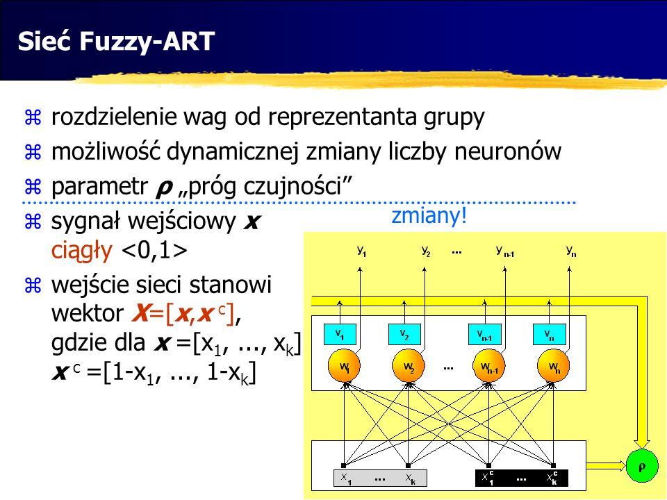 Sieć Fuzzy-ART rozdzielenie wag od reprezentanta grupy