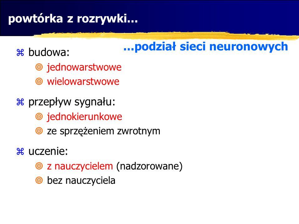 ...podział sieci neuronowych