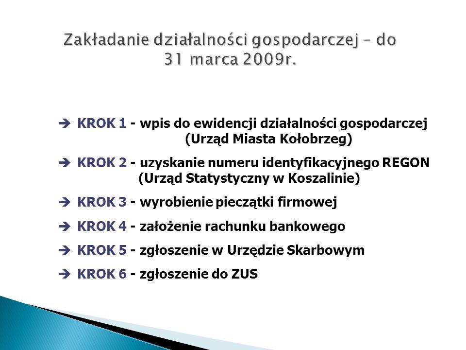 Zakładanie działalności gospodarczej – do 31 marca 2009r.