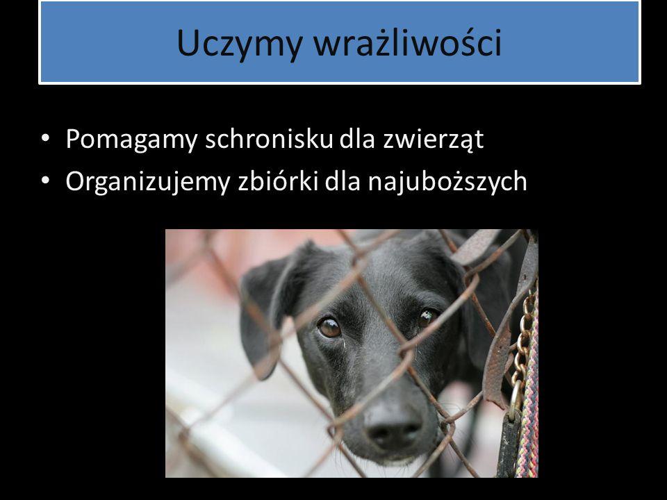 Uczymy wrażliwości Pomagamy schronisku dla zwierząt
