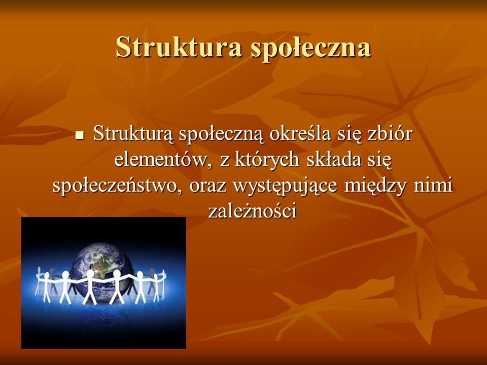 Struktura społeczna Strukturą społeczną określa się zbiór elementów, z których składa się społeczeństwo, oraz występujące między nimi zależności.