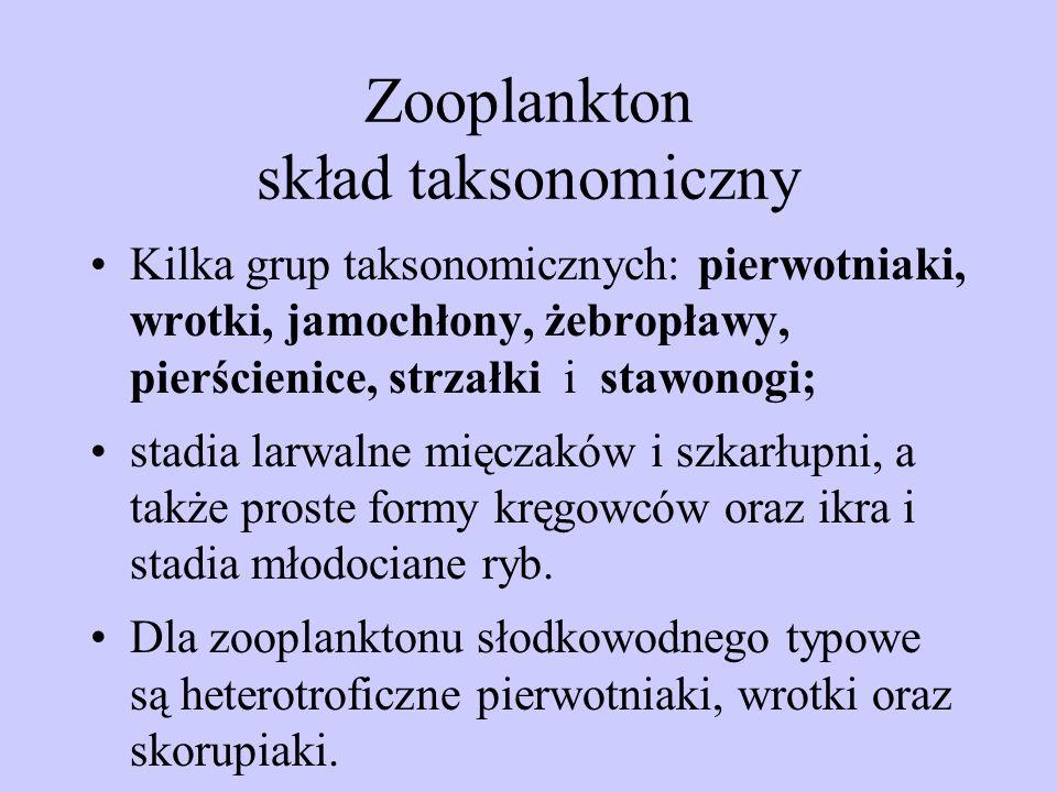 Zooplankton skład taksonomiczny