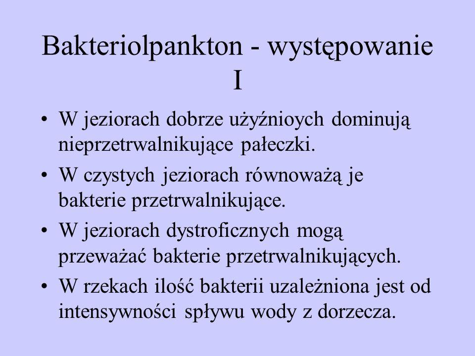Bakteriolpankton - występowanie I