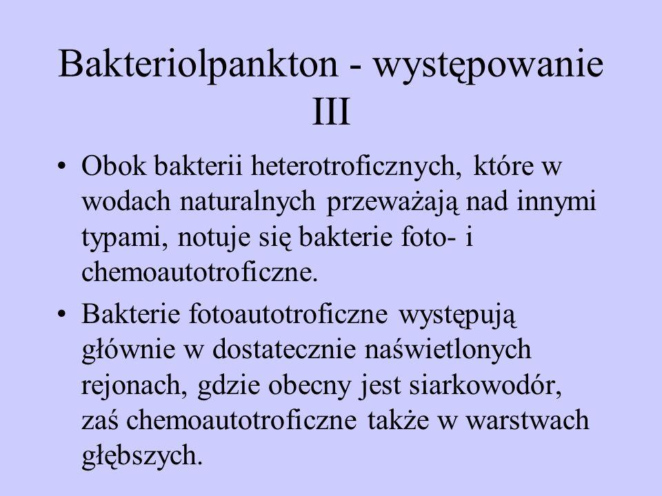 Bakteriolpankton - występowanie III