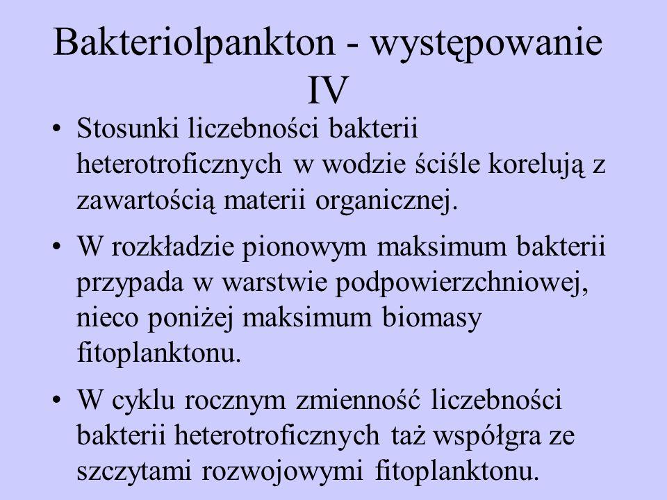 Bakteriolpankton - występowanie IV