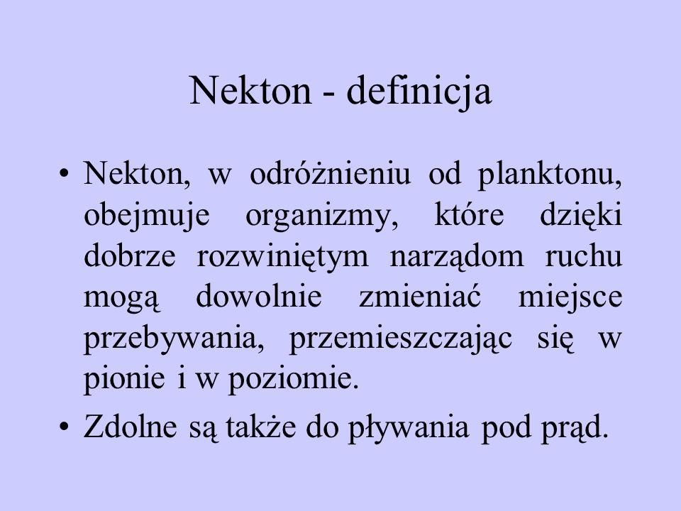 Nekton - definicja