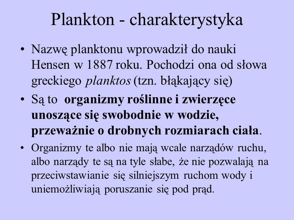 Plankton - charakterystyka