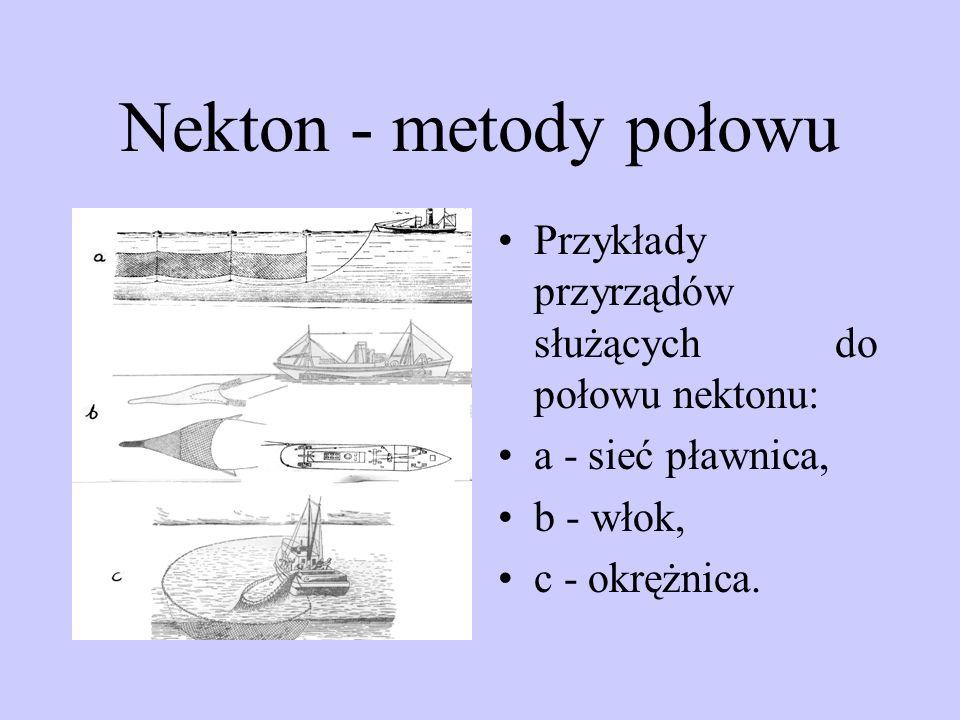 Nekton - metody połowu Przykłady przyrządów służących do połowu nektonu: a - sieć pławnica, b - włok,