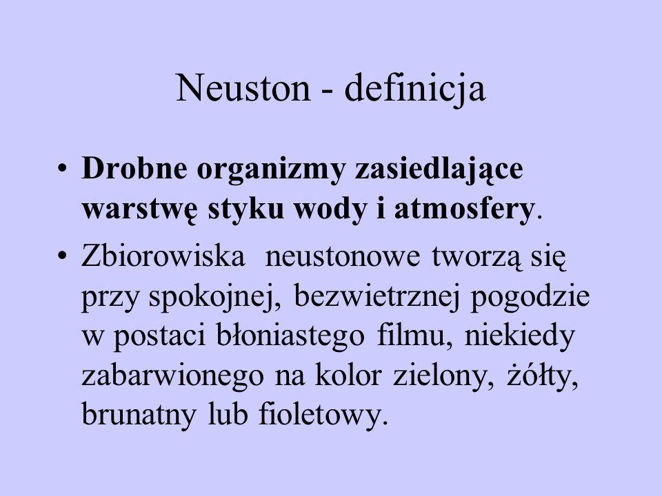 Neuston - definicja Drobne organizmy zasiedlające warstwę styku wody i atmosfery.