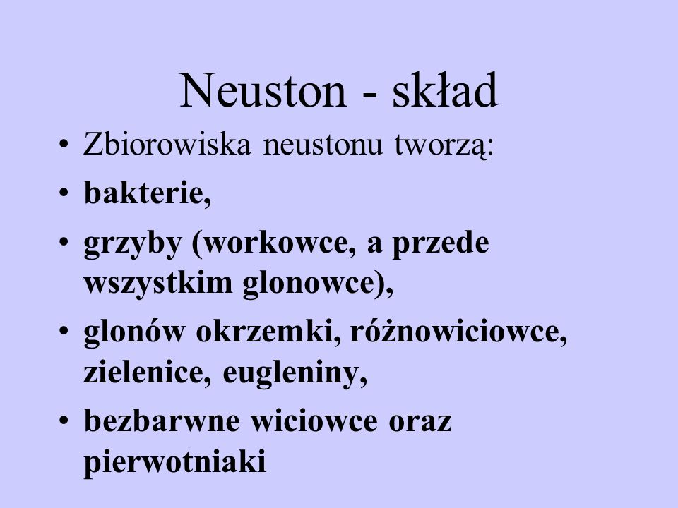 Neuston - skład Zbiorowiska neustonu tworzą: bakterie,