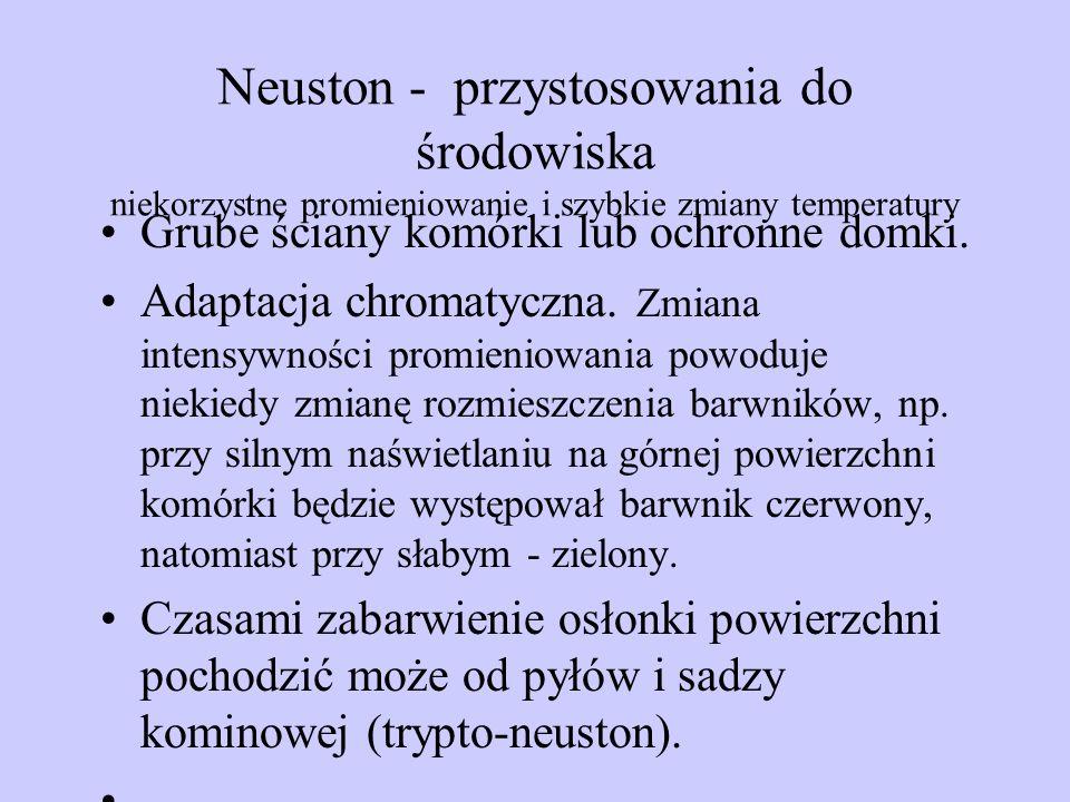 Neuston - przystosowania do środowiska niekorzystne promieniowanie i szybkie zmiany temperatury