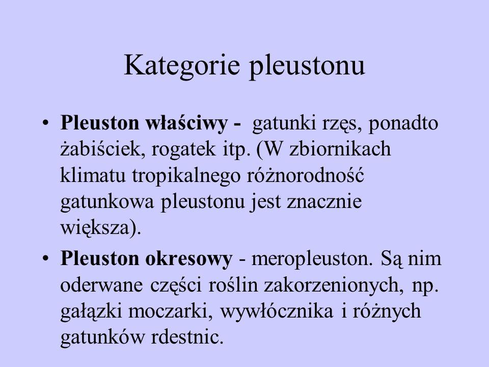 Kategorie pleustonu