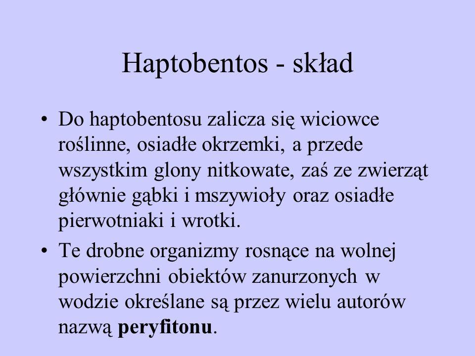 Haptobentos - skład