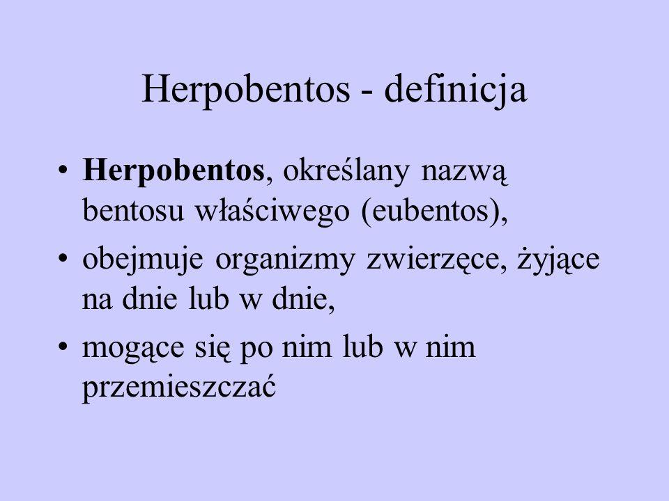 Herpobentos - definicja