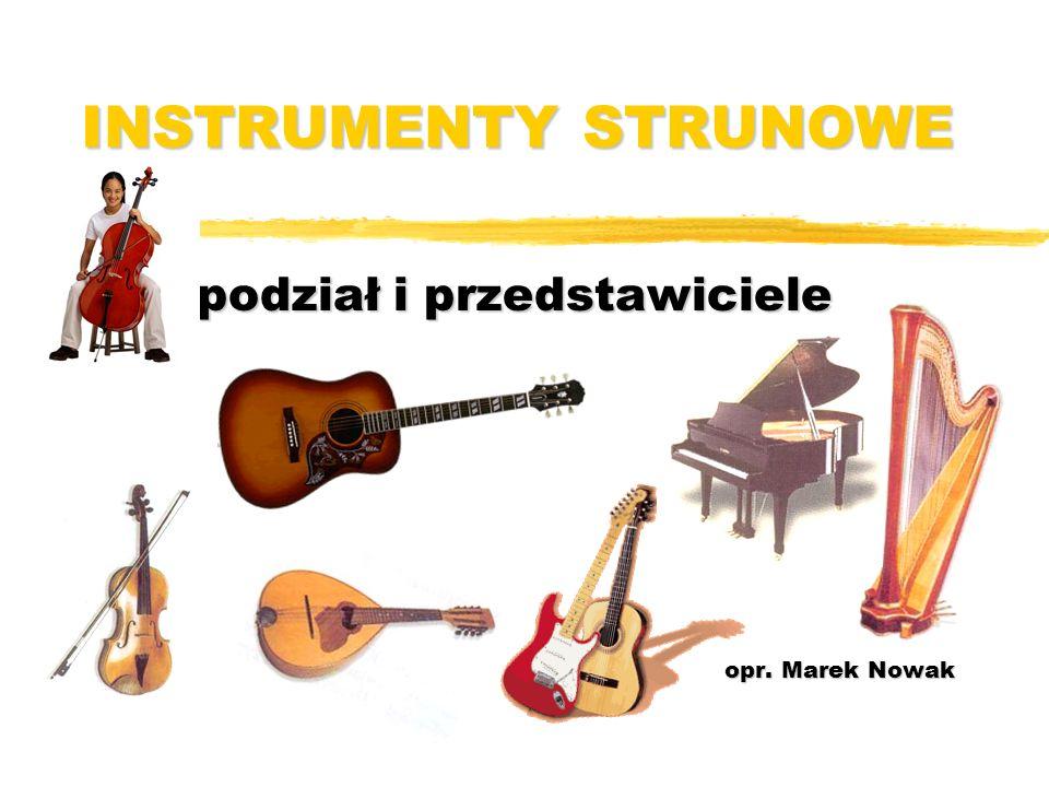 podział i przedstawiciele opr. Marek Nowak
