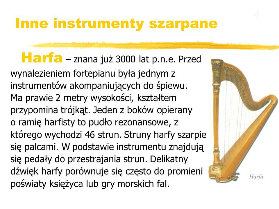 Inne instrumenty szarpane