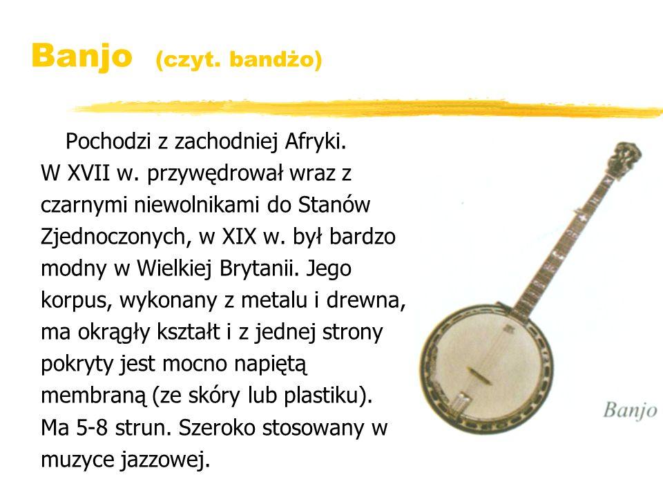 Banjo (czyt. bandżo) Pochodzi z zachodniej Afryki.