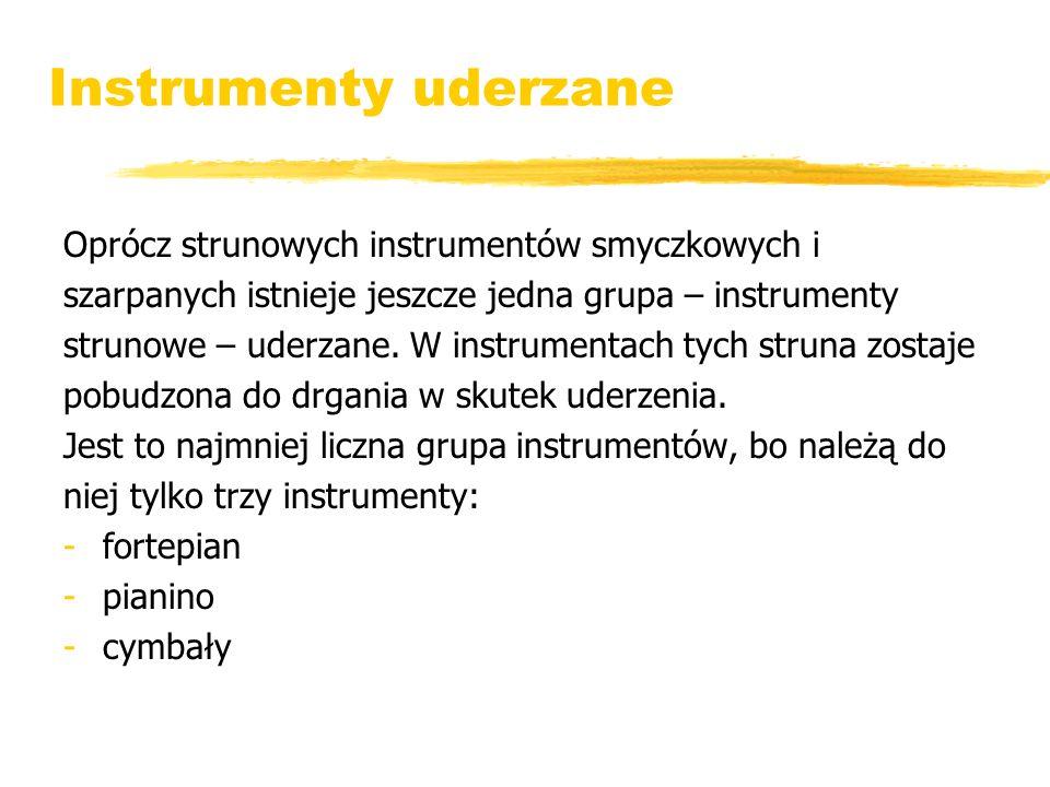 Instrumenty uderzane Oprócz strunowych instrumentów smyczkowych i
