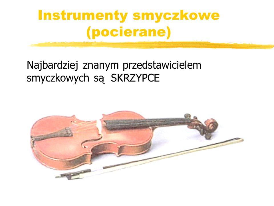 Instrumenty smyczkowe (pocierane)