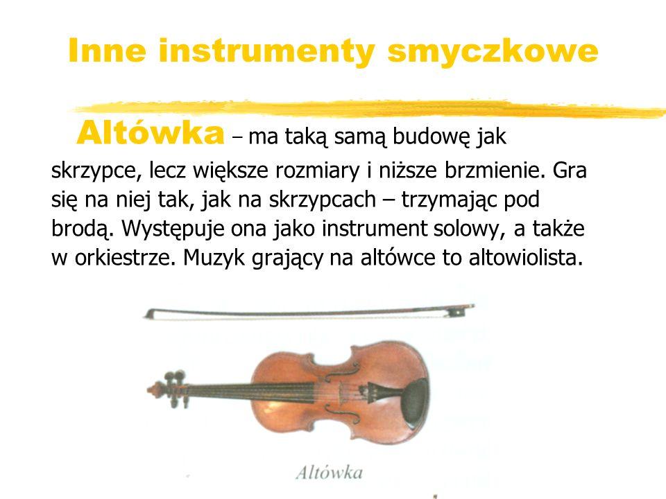 Inne instrumenty smyczkowe