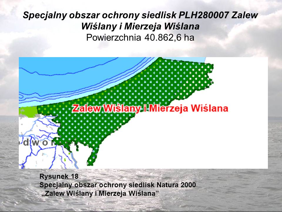Specjalny obszar ochrony siedlisk PLH280007 Zalew Wiślany i Mierzeja Wiślana Powierzchnia 40.862,6 ha