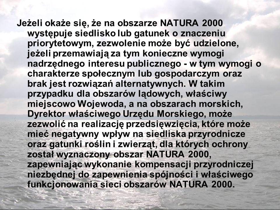 Jeżeli okaże się, że na obszarze NATURA 2000 występuje siedlisko lub gatunek o znaczeniu priorytetowym, zezwolenie może być udzielone, jeżeli przemawiają za tym konieczne wymogi nadrzędnego interesu publicznego - w tym wymogi o charakterze społecznym lub gospodarczym oraz brak jest rozwiązań alternatywnych.