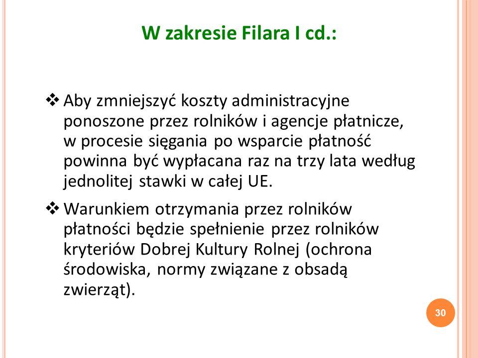 W zakresie Filara I cd.: