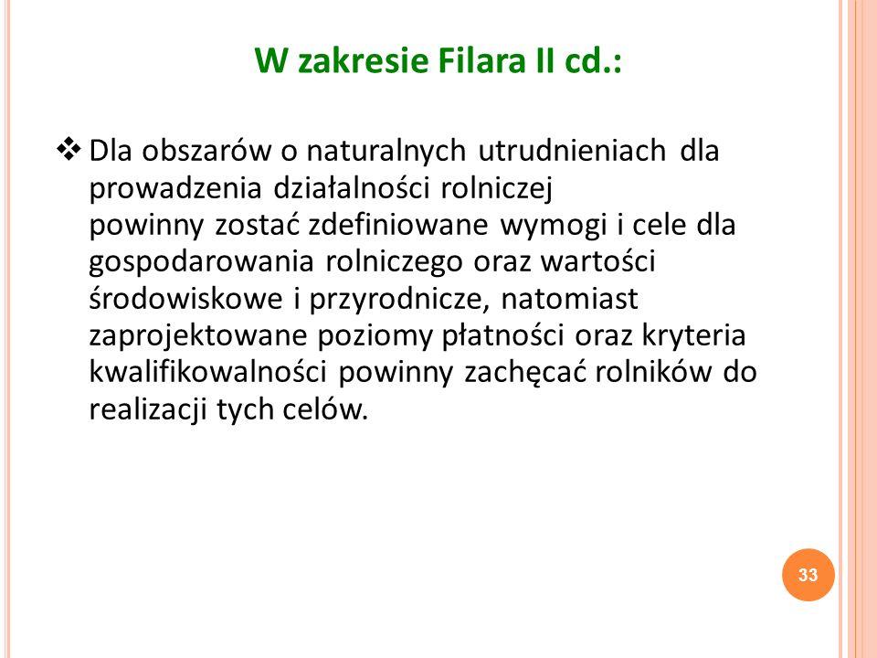 W zakresie Filara II cd.: