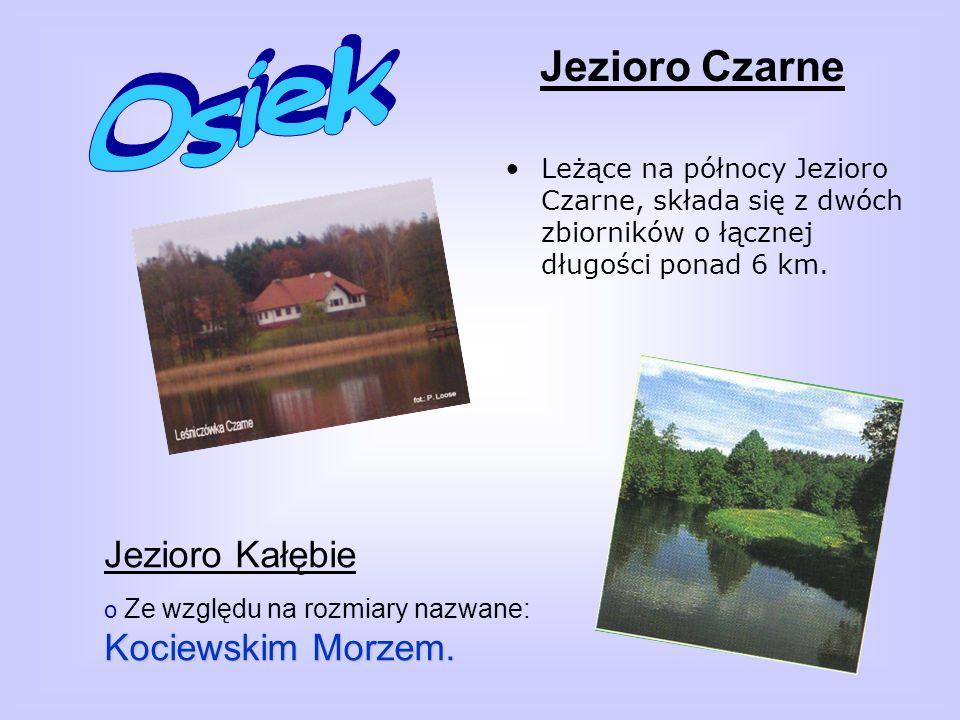Osiek Jezioro Czarne Jezioro Kałębie